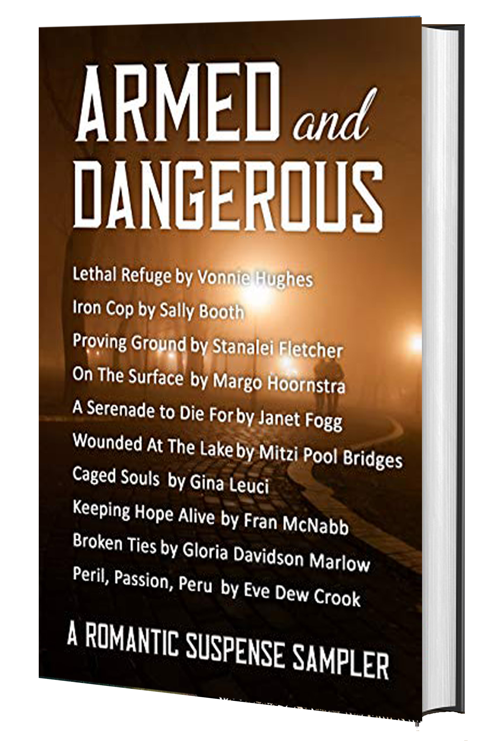 Armed and Dangerous 3D